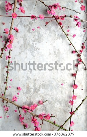 Red ume (Japanese apricot) blossoms on the silver background - stock photo