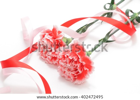 Red white carnation and ribbon isolated on white background