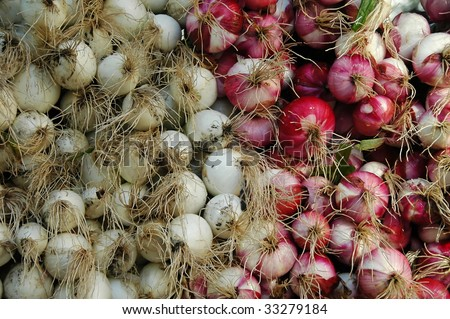 Red & White Onions - stock photo