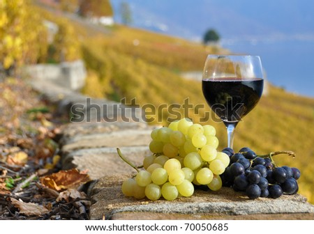 Red wine and grapes on the terrace of vineyard in Lavaux region, Switzerland - stock photo
