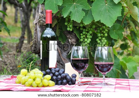 Red wine and grapes served at a picnic