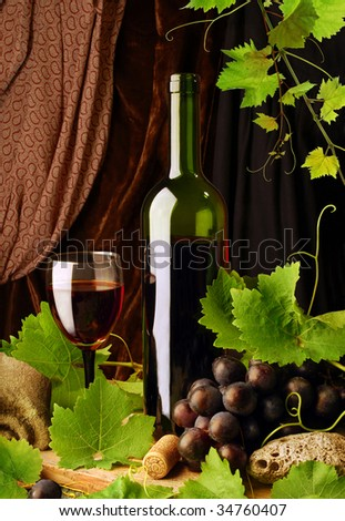 Red wine and grapevine - stock photo