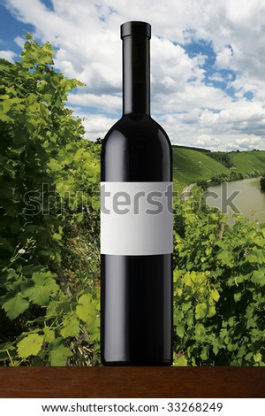 red wine and vines - stock photo