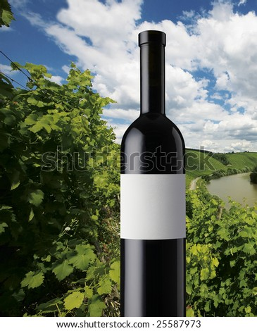 Red wine bottle for landscape - stock photo