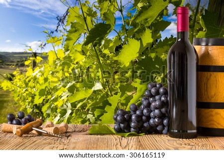 Red wine bottles with grapes on wodden board. Beautiful Tuscany background - stock photo