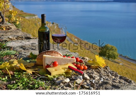 Red wine, chees, bread and cherry tomatos. Lavaux, Switzerland