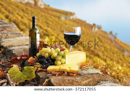 Red wine, cheese and grapes on the terrace of vineyard in Lavaux region, Switzerland - stock photo