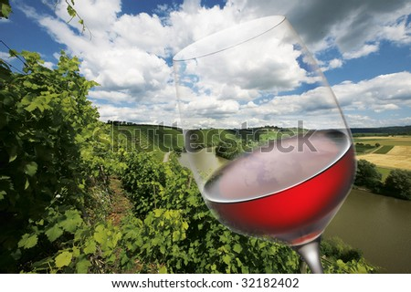 Red wine glas - stock photo