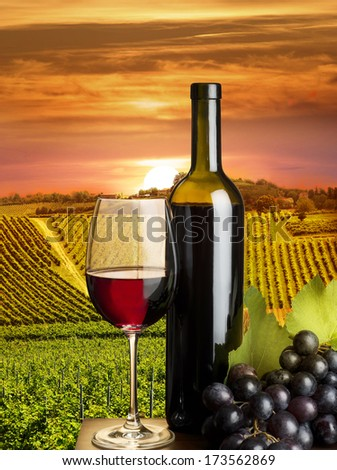 red wine glass with grapes in the vineyard