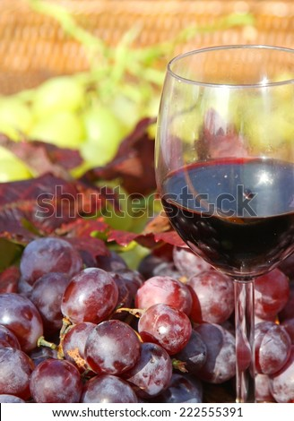 red wine goblet and bunch of red grapes in autumn - stock photo
