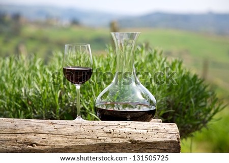 Red wine in a wine carafe and a wine glass in vineyard - stock photo