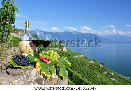 Red wine on the terrace vineyard in Lavaux region, Switzerland  - stock photo