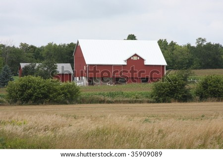red wisconsin dairy barn in summer - stock photo