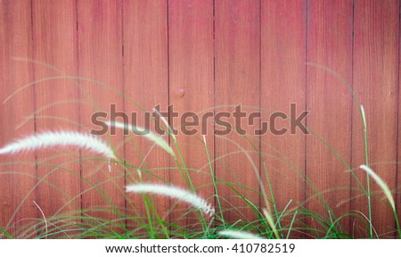 red wooden wall soft Grass in front  - stock photo