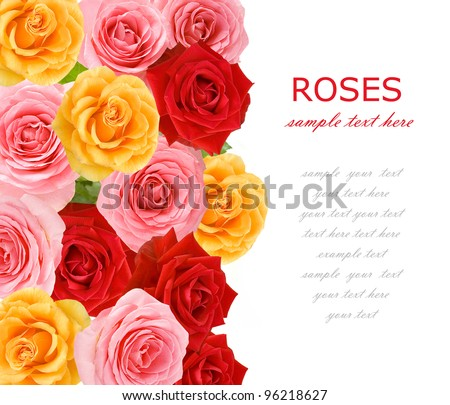 Red, yellow and pink roses background with sample text