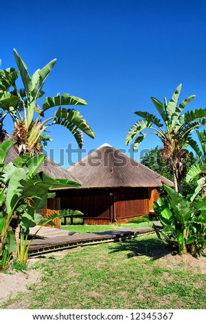 Reed-roof African house between two palms. Shot near Sodwana Bay nature reserve, KwaZulu-Natal province, Southern Mozambique area, South Africa. - stock photo