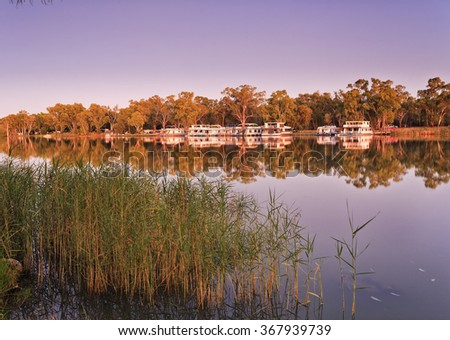 Reeds along banks of Murray river at sunrise with river houses docked on the opposite side reflecting in still waters