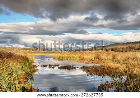 Reeds and water at Leighton Moss, Lancashire - stock photo