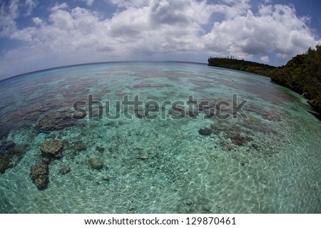 Reef-building corals fringe the beautiful island of Isle de Lifou near New Caledonia.  The clear, warm waters of this island support a wide variety of fish and invertebrates. - stock photo