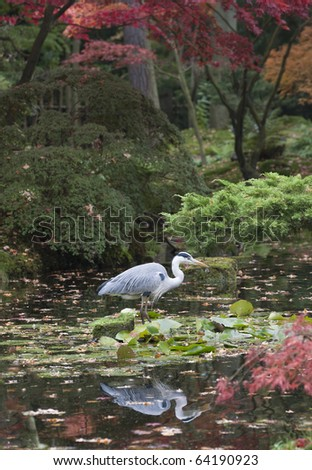 Reflected heron in a pond of a japanese garden - stock photo