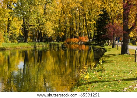 Reflection in pond, autumn, yellow and red leaves
