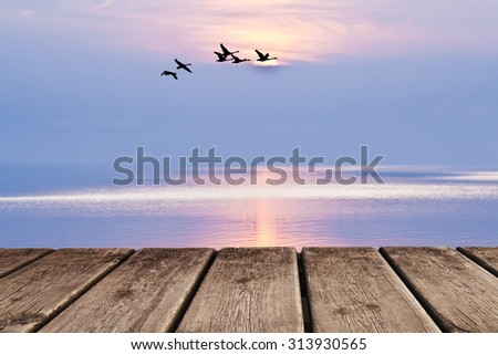 reflection in the lake - stock photo