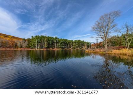 Reflection,Lake Nawahunta New Jersey - stock photo