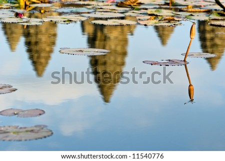 Reflection of Angkor Wat Temple at sunset, with Dragonfly. Siem reap, Cambodia. - stock photo
