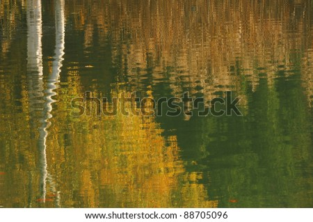 Reflection of autumnal forest in Switzerland - stock photo