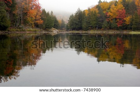 Reflection of colorful forest in lake surface in the overcast day