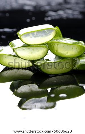Reflection of slice sloe - stock photo