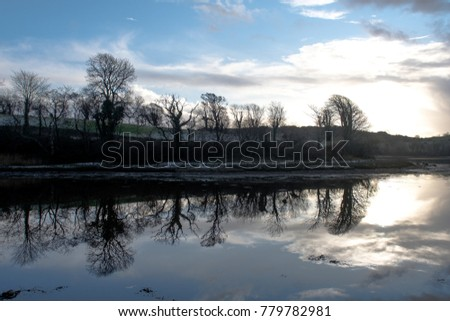 Reflection of trees in estuary water in Co Donegal, near Mount Charles.