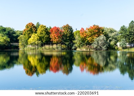 Reflection of trees in water in an autumn landscape. - stock photo