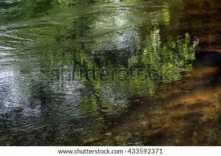 Reflection of trees on a surface of river water