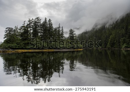 Reflection of trees on water, Skeena-Queen Charlotte Regional District, Haida Gwaii, Graham Island, British Columbia, Canada - stock photo