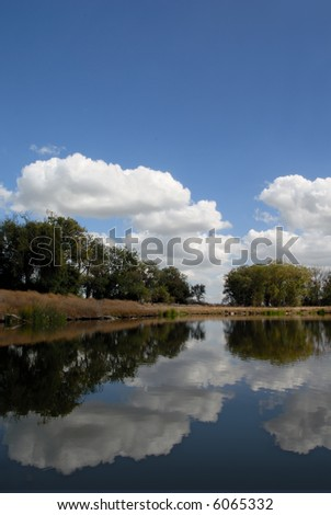 Reflection of White Clouds in Wildlife Pond