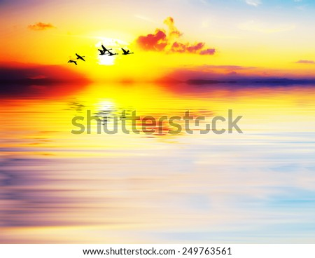 reflections in a lake sunrise - stock photo
