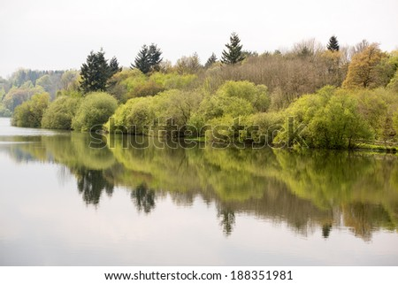 Reflections of an English woodland, Ardingly Reservoir - stock photo