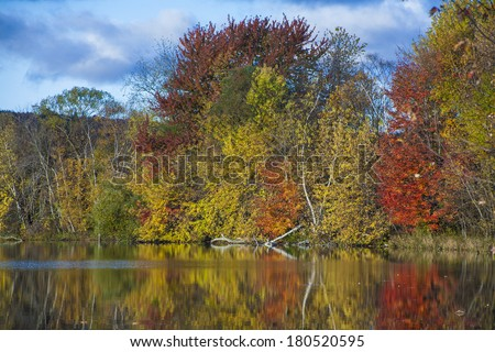 Reflections of autumn leaf color in New England in the fall