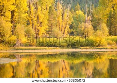 Reflections of autumn's splendor in Grand Teton N.P. - stock photo