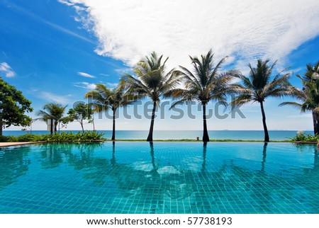 reflections of palms in the pool - stock photo