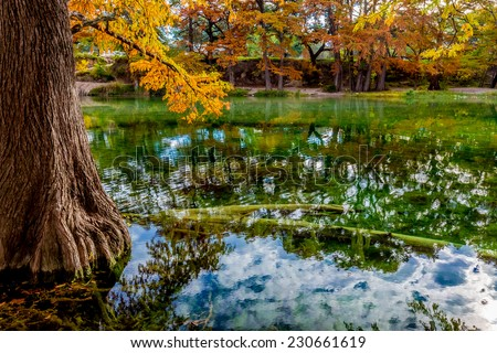 Reflections of the Beautiful Fall Foliage Surrounding the Clear Frio River, Texas. - stock photo