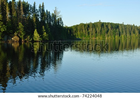Reflections on the Coniferous Forest on a Wilderness Lake