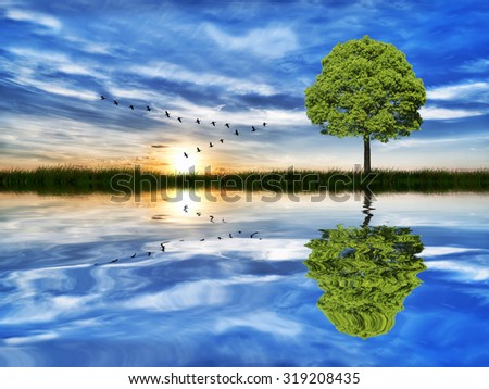 reflections on the lake - stock photo
