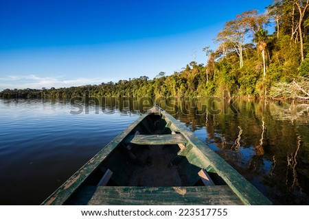 reflects of the jungle on the water of the river in the amazon - stock photo