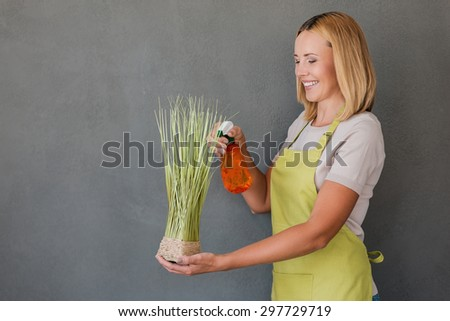 Refreshing plant. Cheerful mature woman in green apron spraying water on plant and smiling while standing against grey background  - stock photo