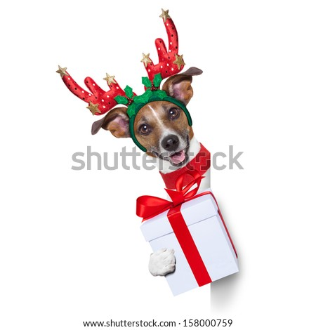 reindeer dog behind a blank banner with a christmas present - stock photo