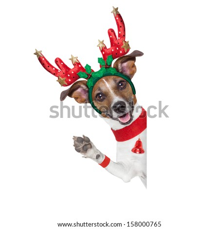 reindeer dog behind a blank banner with waving with paw - stock photo