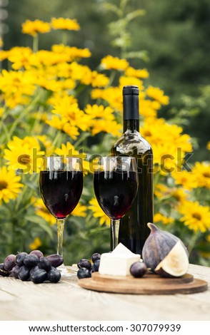 Relax concept - wine party outdoors.