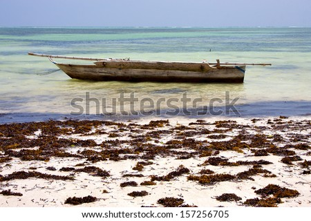 relax  of zanzibar  africa coastline boat pirague in the  blue lagoon